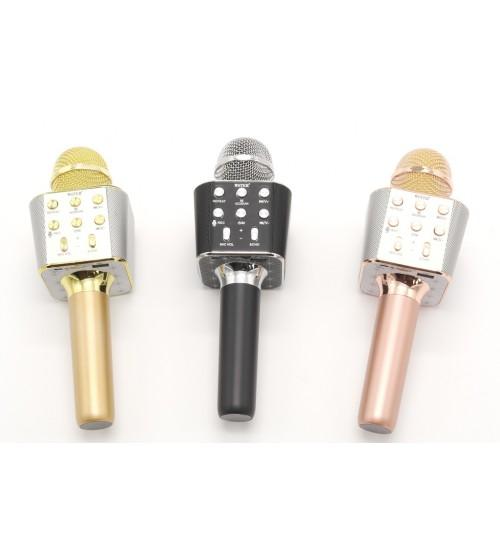 1688 WS Микрофон с караоке